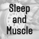 睡眠と筋肥大