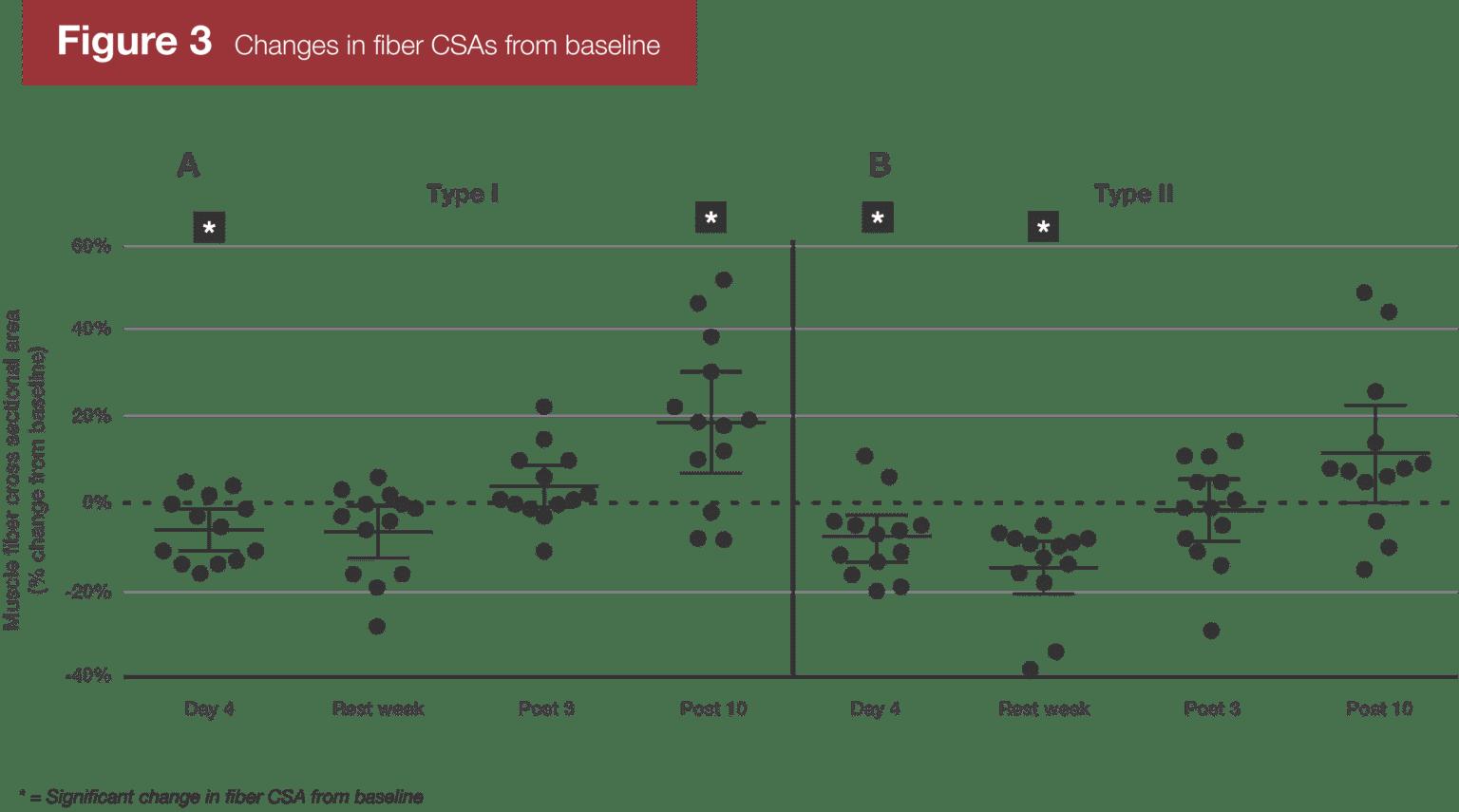 遅発性筋肥大超回復研究の表と図